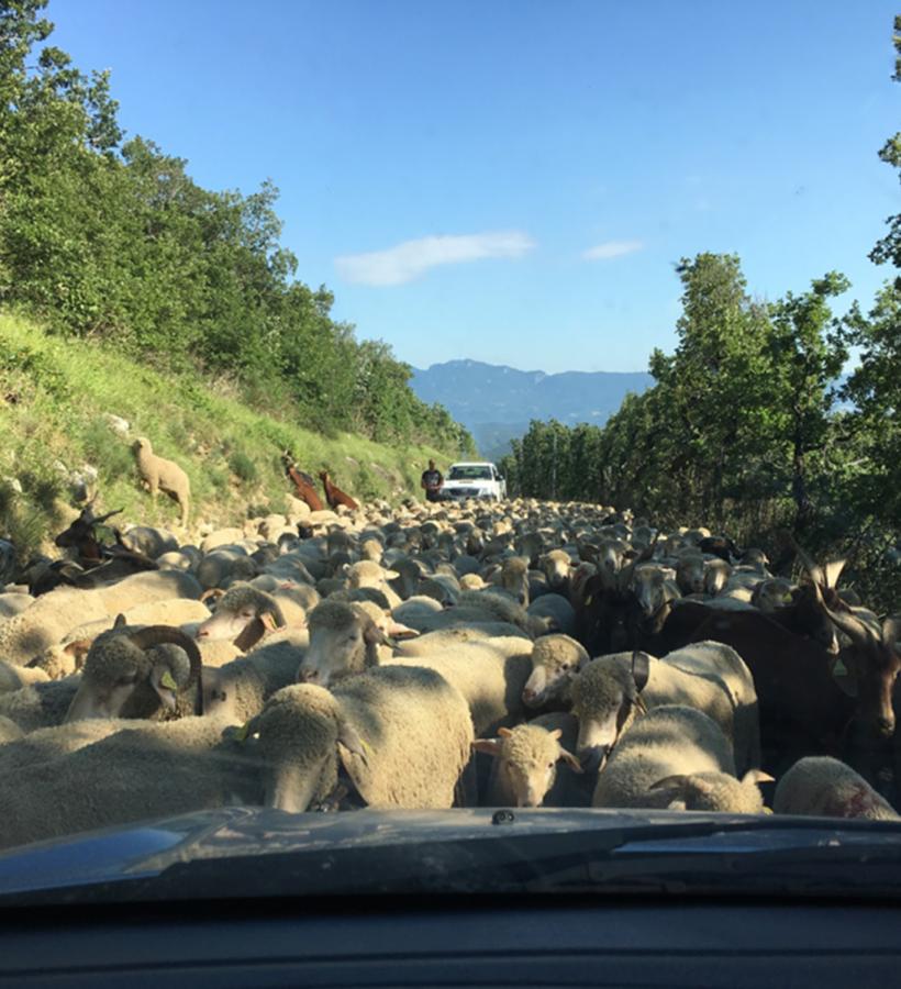 Das Leben im Drôme-Tal