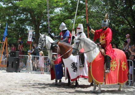 Das Mittelalterfest